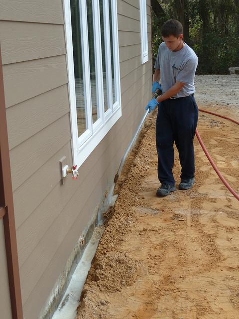 Termite Treatment Cost: Should I Hire Or DIY?