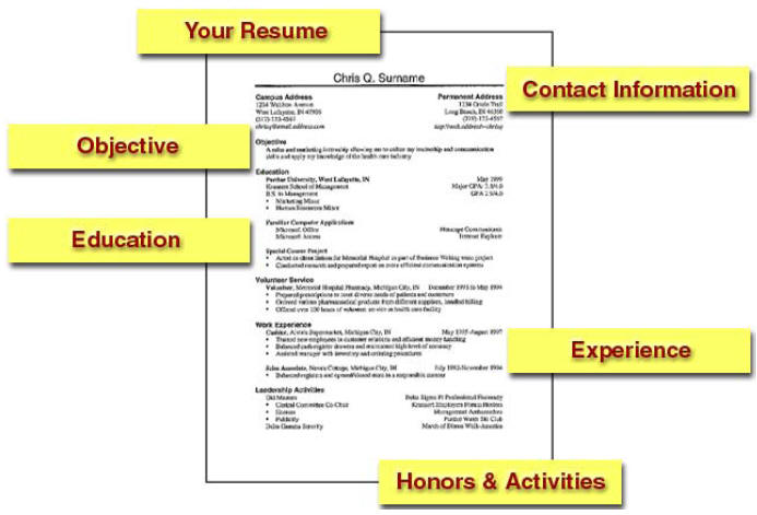 top 5 free resume templates that will get you the job - How To Make Resume Free